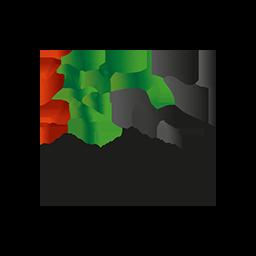 HH Sheikh Mansoor Bin Zayed Racing Festival
